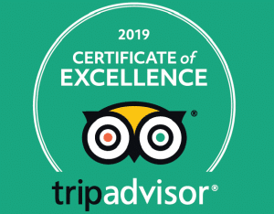 Trip Advisor Certificate of Excellence Lyon Airport Bens Bus 2019